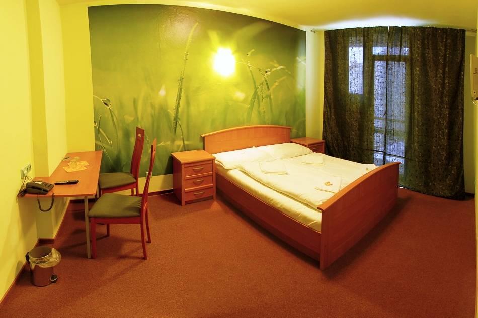 Standard room Hotel Liberec - Green